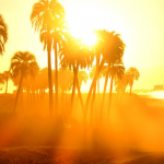 夏の大気汚染の傾向: 大気質に影響を与える要因